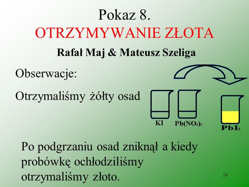 Pokaz 8. OTRZYMYWANIE ZŁOTA Rafał Maj & Mateusz Szeliga