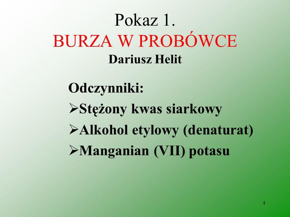 Pokaz 1. BURZA W PROBÓWCE Dariusz Helit