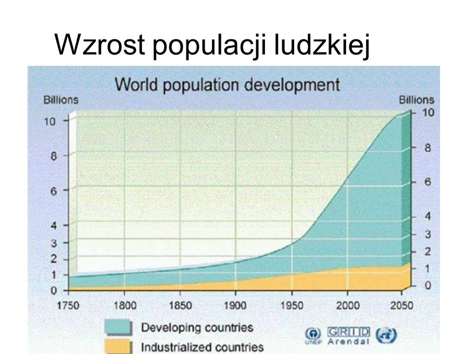 Wzrost populacji ludzkiej
