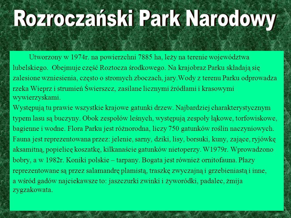 Rozroczański Park Narodowy