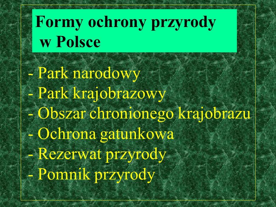 - Park narodowy - Park krajobrazowy - Obszar chronionego krajobrazu - Ochrona gatunkowa - Rezerwat przyrody - Pomnik przyrody