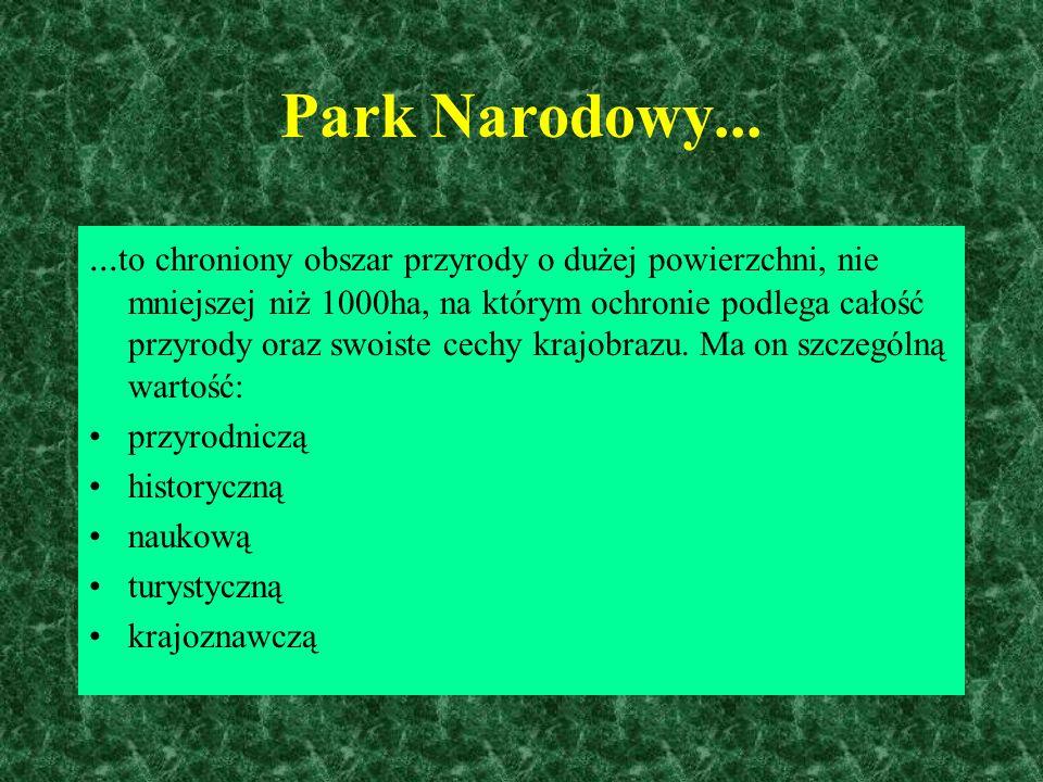 Park Narodowy...