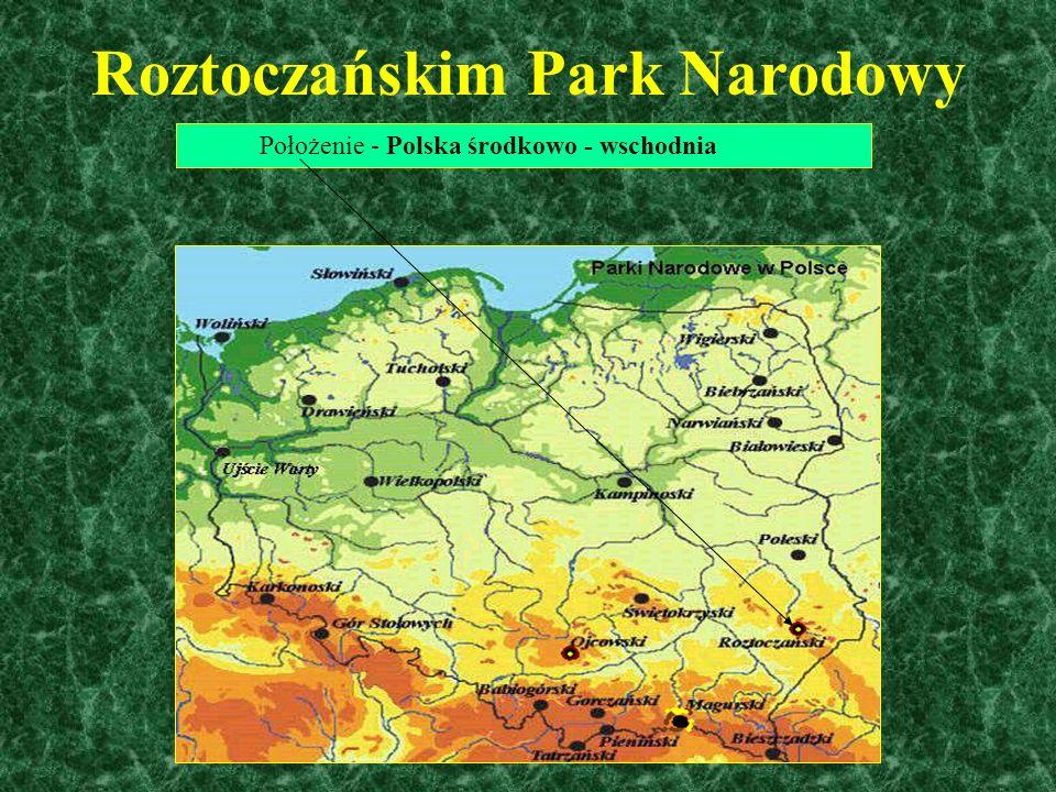 Roztoczańskim Park Narodowy