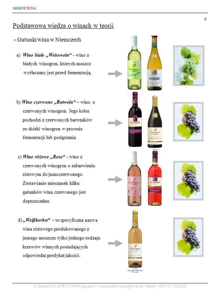 Podstawowa wiedza o winach w teorii