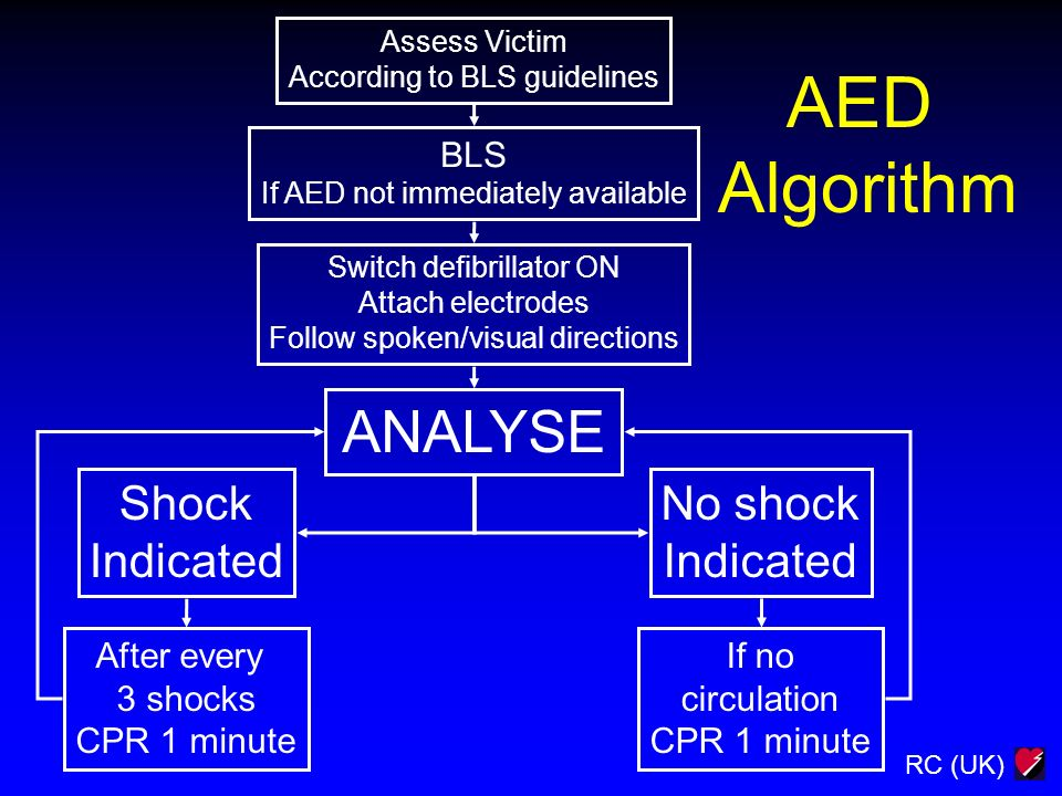 AED Algorithm ANALYSE Shock Indicated No shock BLS After every