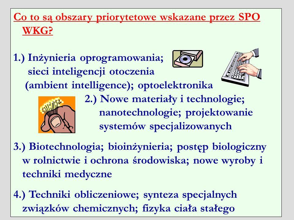 Co to są obszary priorytetowe wskazane przez SPO WKG
