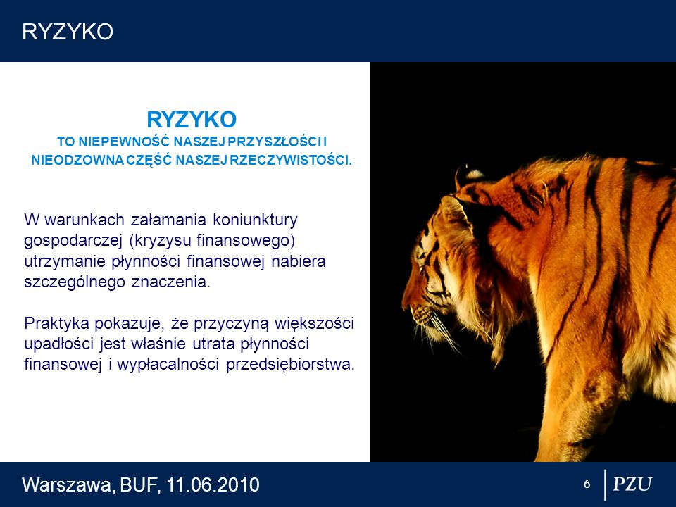 RYZYKO RYZYKO Warszawa, BUF, 11.06.2010