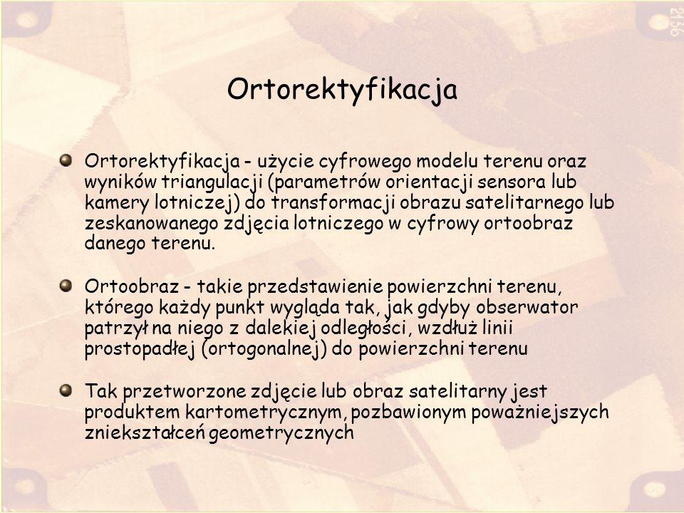 Ortorektyfikacja