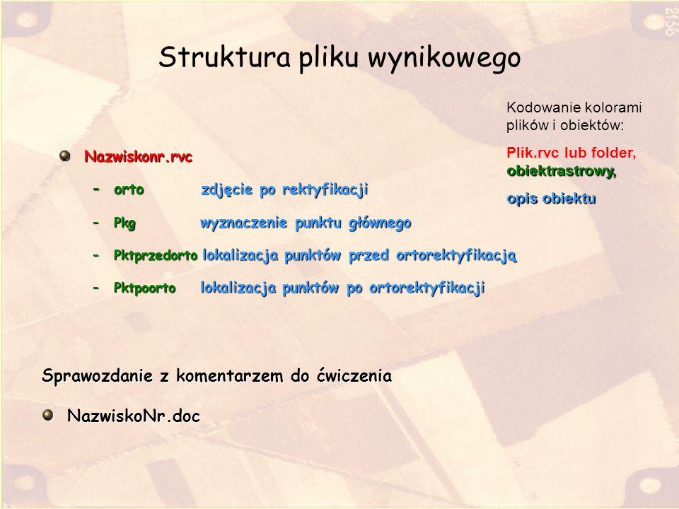 Struktura pliku wynikowego