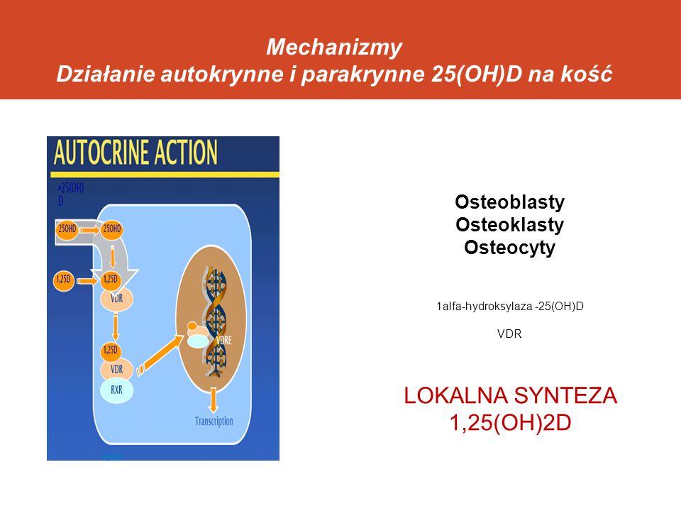Mechanizmy Działanie autokrynne i parakrynne 25(OH)D na kość