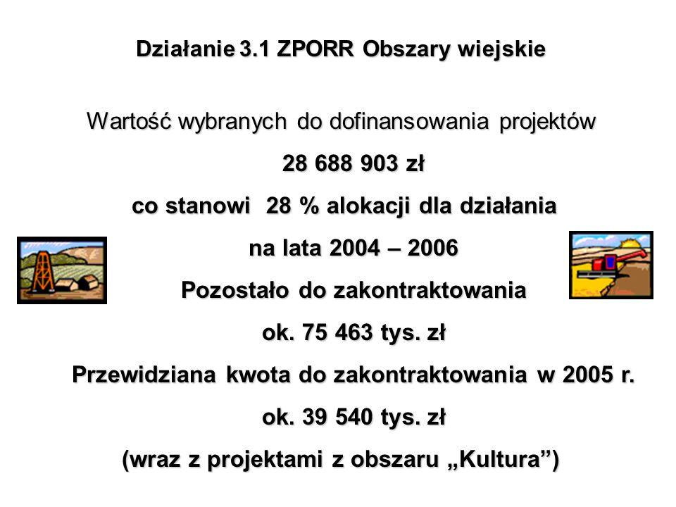 Wartość wybranych do dofinansowania projektów 28 688 903 zł