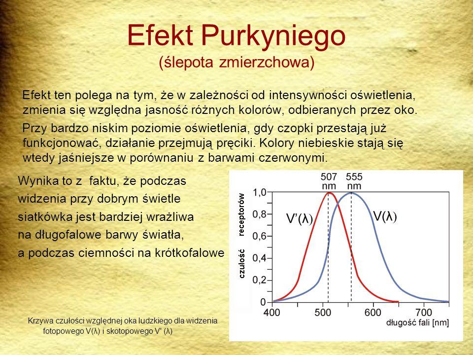 Efekt Purkyniego (ślepota zmierzchowa)