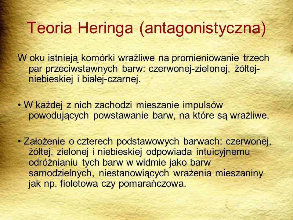 Teoria Heringa (antagonistyczna)