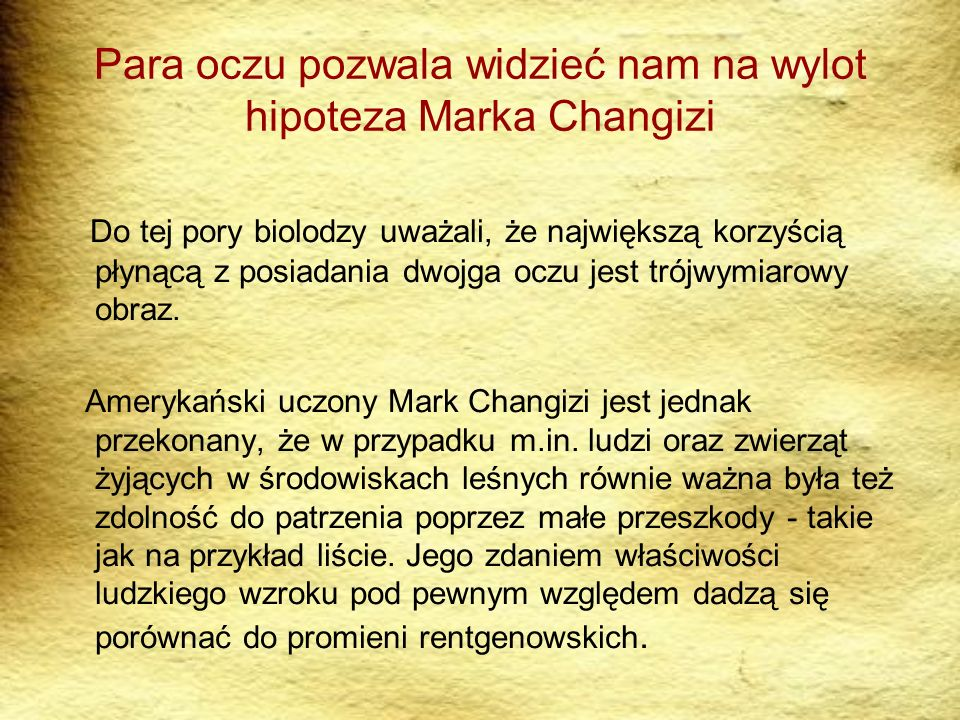 Para oczu pozwala widzieć nam na wylot hipoteza Marka Changizi