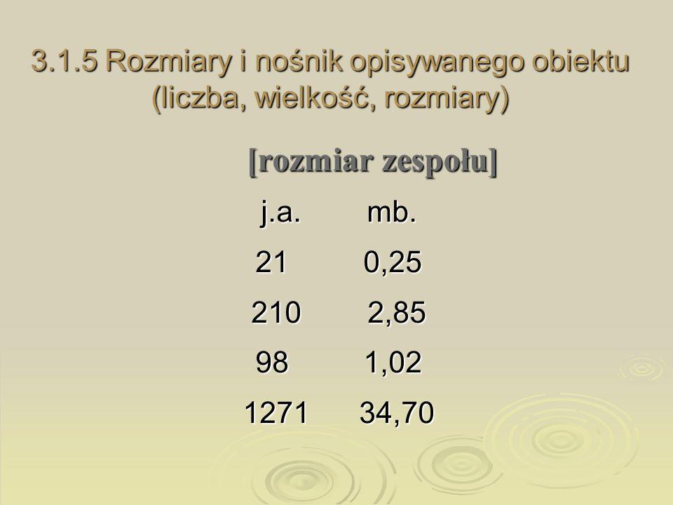 3.1.5 Rozmiary i nośnik opisywanego obiektu (liczba, wielkość, rozmiary)