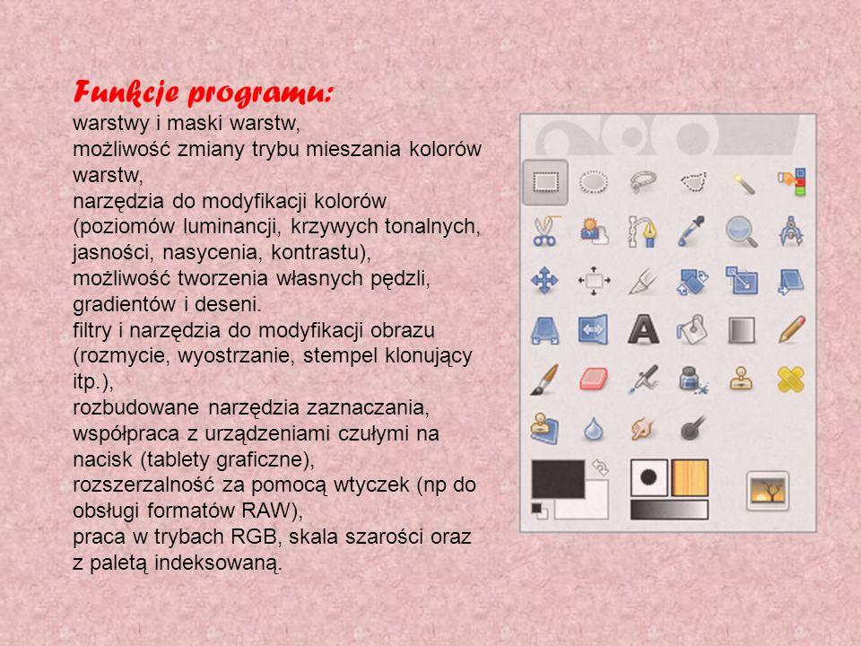 Funkcje programu: warstwy i maski warstw,