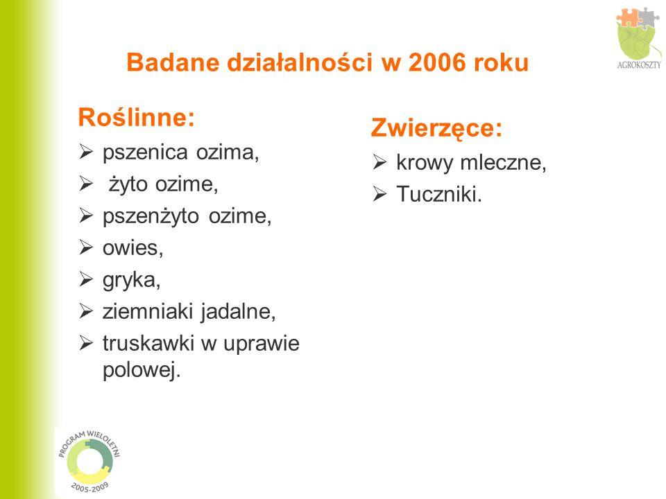 Badane działalności w 2006 roku