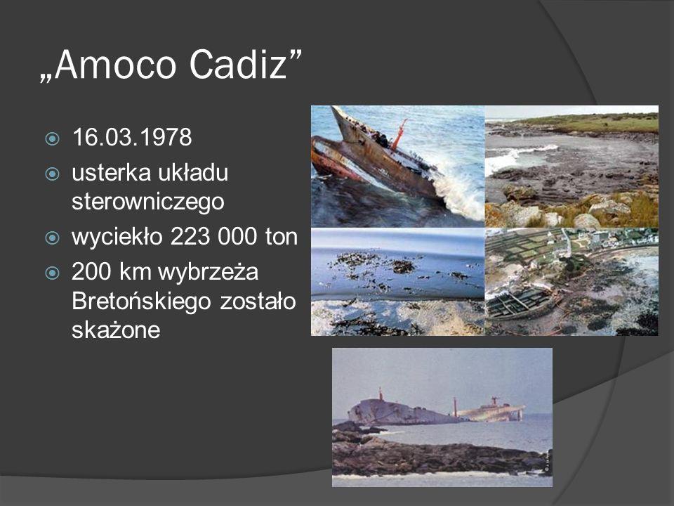 """""""Amoco Cadiz 16.03.1978 usterka układu sterowniczego"""
