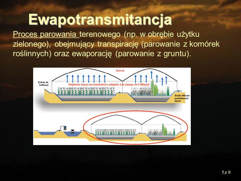 Ewapotransmitancja