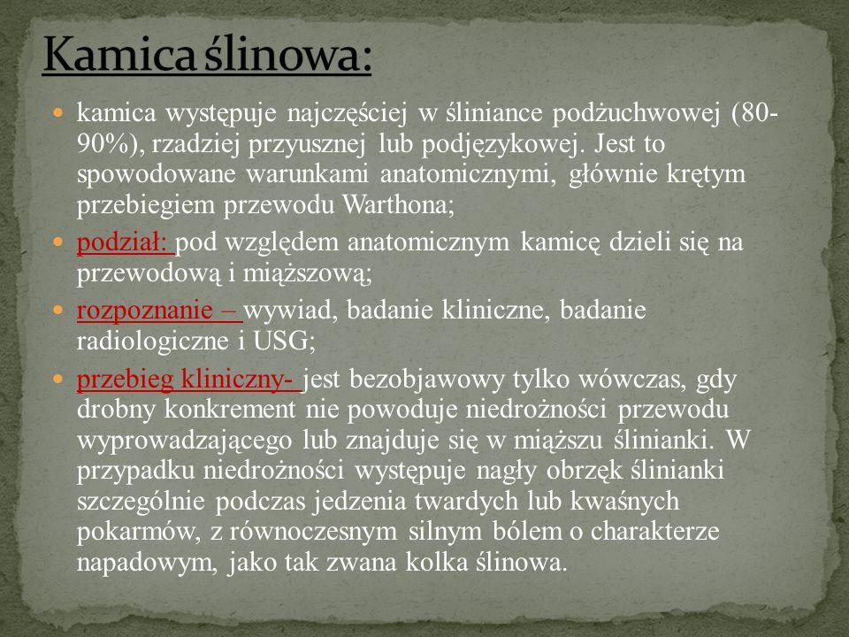 Kamica ślinowa: