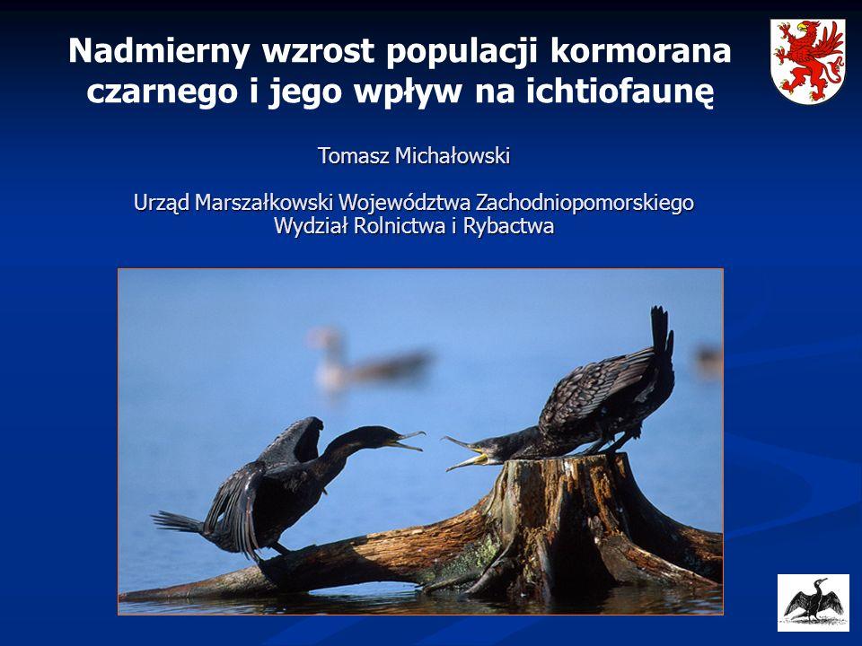 Nadmierny wzrost populacji kormorana czarnego i jego wpływ na ichtiofaunę