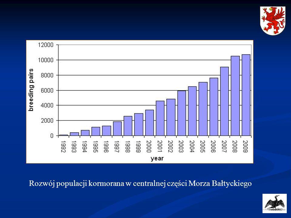 Rozwój populacji kormorana w centralnej części Morza Bałtyckiego