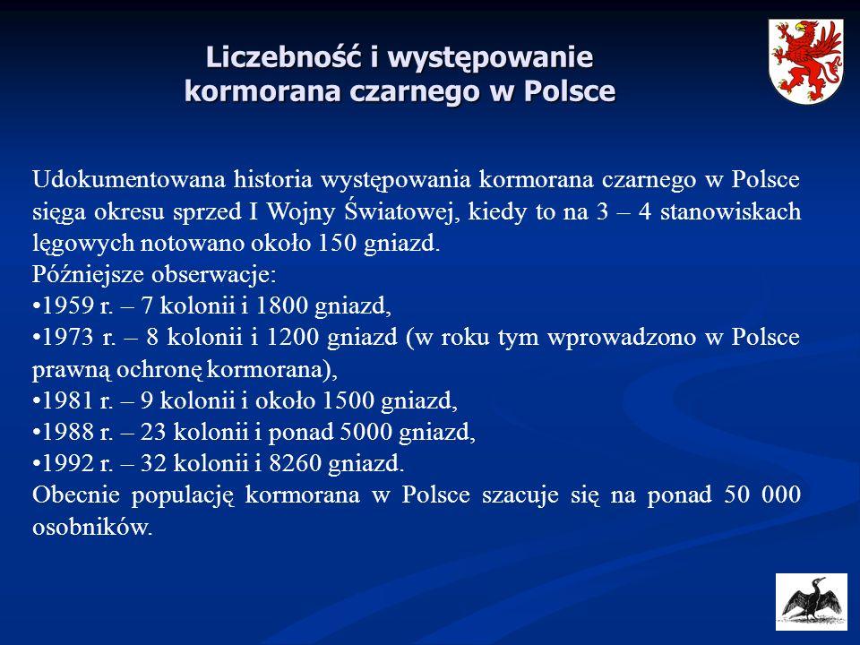 Liczebność i występowanie kormorana czarnego w Polsce