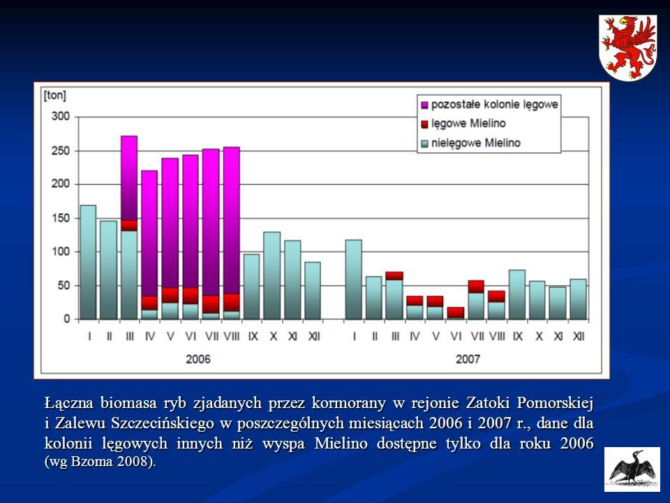 Łączna biomasa ryb zjadanych przez kormorany w rejonie Zatoki Pomorskiej i Zalewu Szczecińskiego w poszczególnych miesiącach 2006 i 2007 r., dane dla kolonii lęgowych innych niż wyspa Mielino dostępne tylko dla roku 2006 (wg Bzoma 2008).