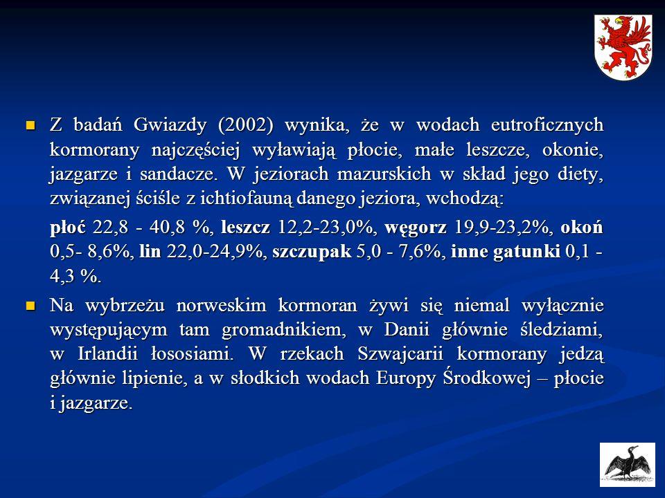Z badań Gwiazdy (2002) wynika, że w wodach eutroficznych kormorany najczęściej wyławiają płocie, małe leszcze, okonie, jazgarze i sandacze. W jeziorach mazurskich w skład jego diety, związanej ściśle z ichtiofauną danego jeziora, wchodzą: