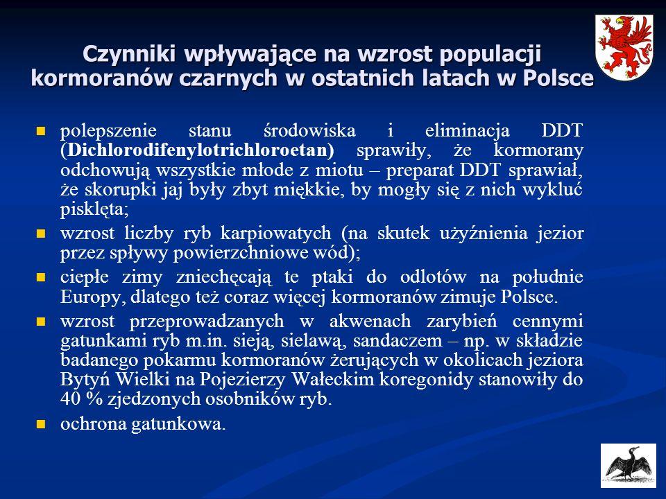 Czynniki wpływające na wzrost populacji kormoranów czarnych w ostatnich latach w Polsce