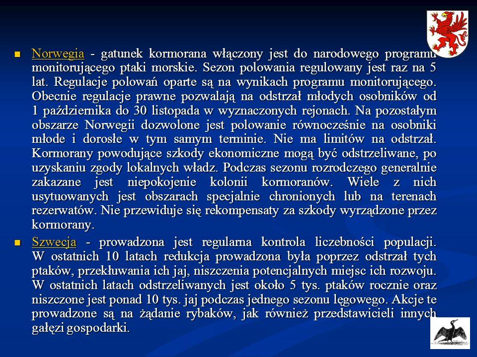 Norwegia - gatunek kormorana włączony jest do narodowego programu monitorującego ptaki morskie. Sezon polowania regulowany jest raz na 5 lat. Regulacje polowań oparte są na wynikach programu monitorującego. Obecnie regulacje prawne pozwalają na odstrzał młodych osobników od 1 października do 30 listopada w wyznaczonych rejonach. Na pozostałym obszarze Norwegii dozwolone jest polowanie równocześnie na osobniki młode i dorosłe w tym samym terminie. Nie ma limitów na odstrzał. Kormorany powodujące szkody ekonomiczne mogą być odstrzeliwane, po uzyskaniu zgody lokalnych władz. Podczas sezonu rozrodczego generalnie zakazane jest niepokojenie kolonii kormoranów. Wiele z nich usytuowanych jest obszarach specjalnie chronionych lub na terenach rezerwatów. Nie przewiduje się rekompensaty za szkody wyrządzone przez kormorany.