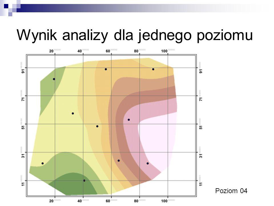 Wynik analizy dla jednego poziomu