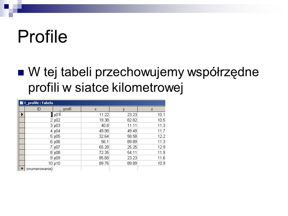Profile W tej tabeli przechowujemy współrzędne profili w siatce kilometrowej