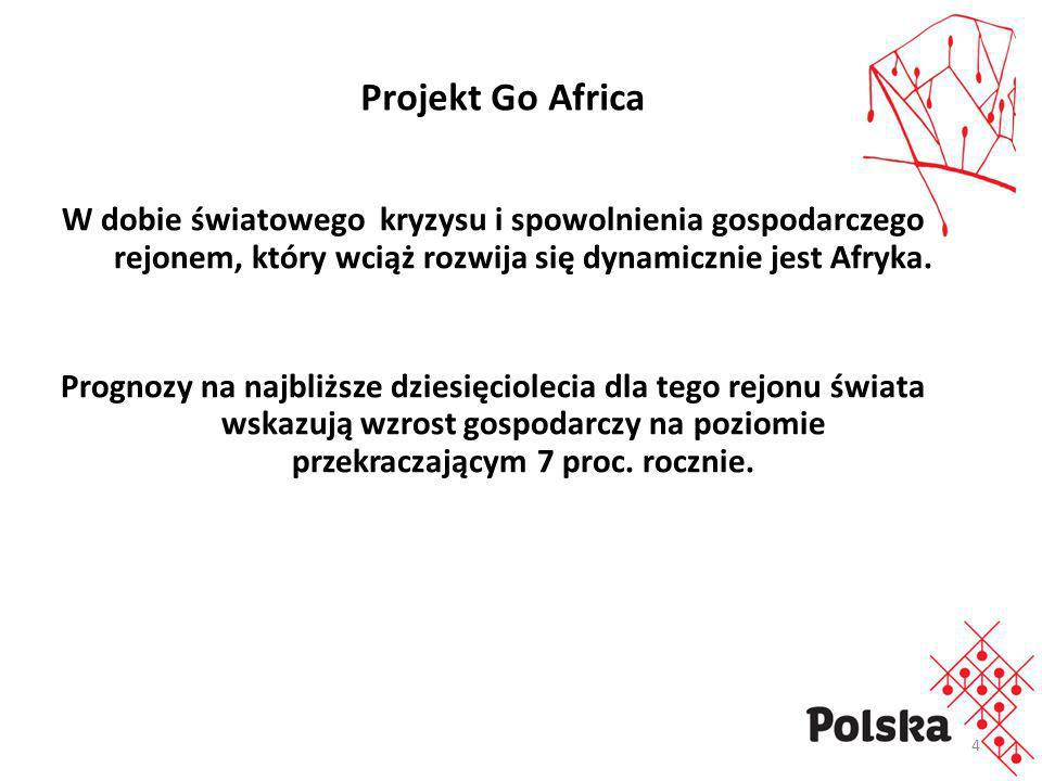 Projekt Go AfricaW dobie światowego kryzysu i spowolnienia gospodarczego rejonem, który wciąż rozwija się dynamicznie jest Afryka.