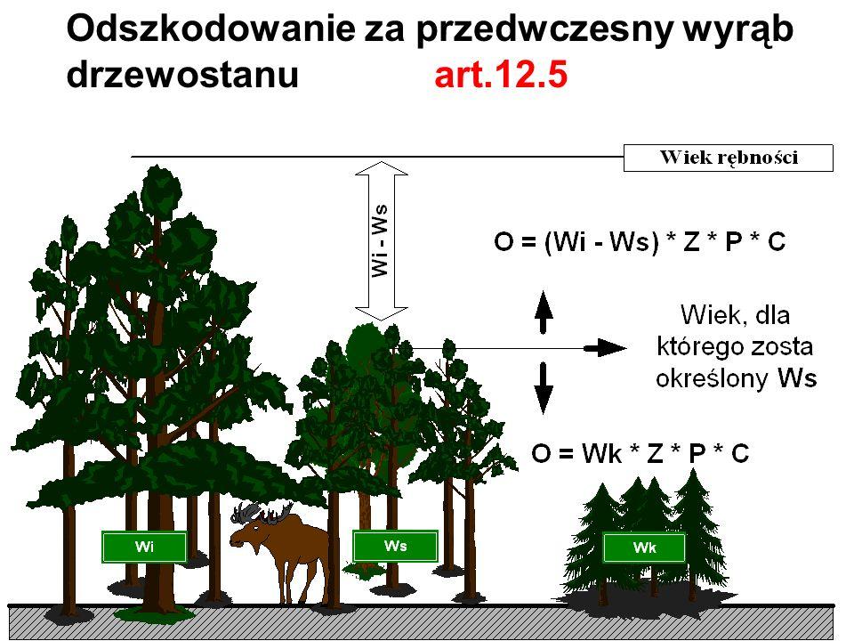 Odszkodowanie za przedwczesny wyrąb drzewostanu art.12.5