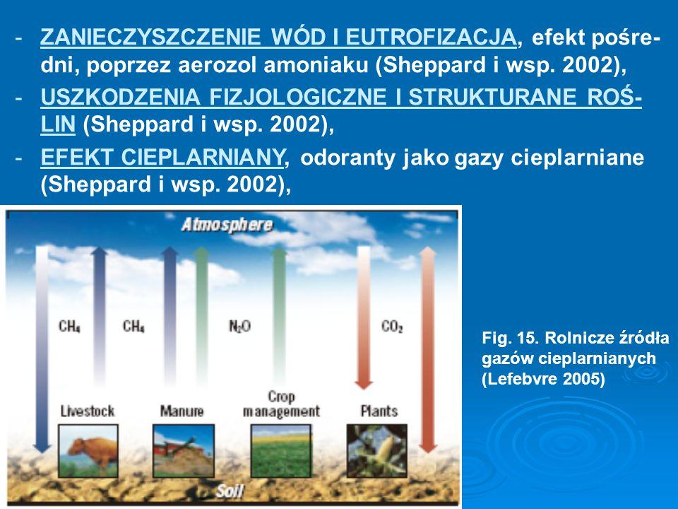 ZANIECZYSZCZENIE WÓD I EUTROFIZACJA, efekt pośre-dni, poprzez aerozol amoniaku (Sheppard i wsp. 2002),