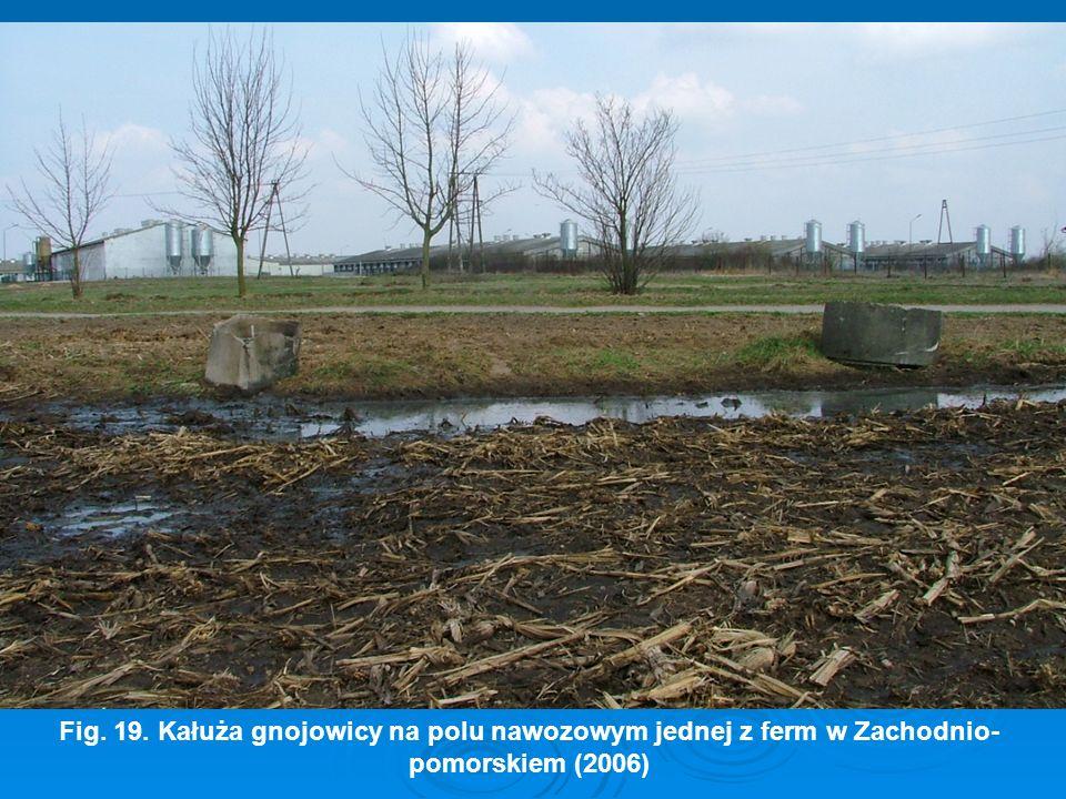 Fig. 19. Kałuża gnojowicy na polu nawozowym jednej z ferm w Zachodnio-pomorskiem (2006)