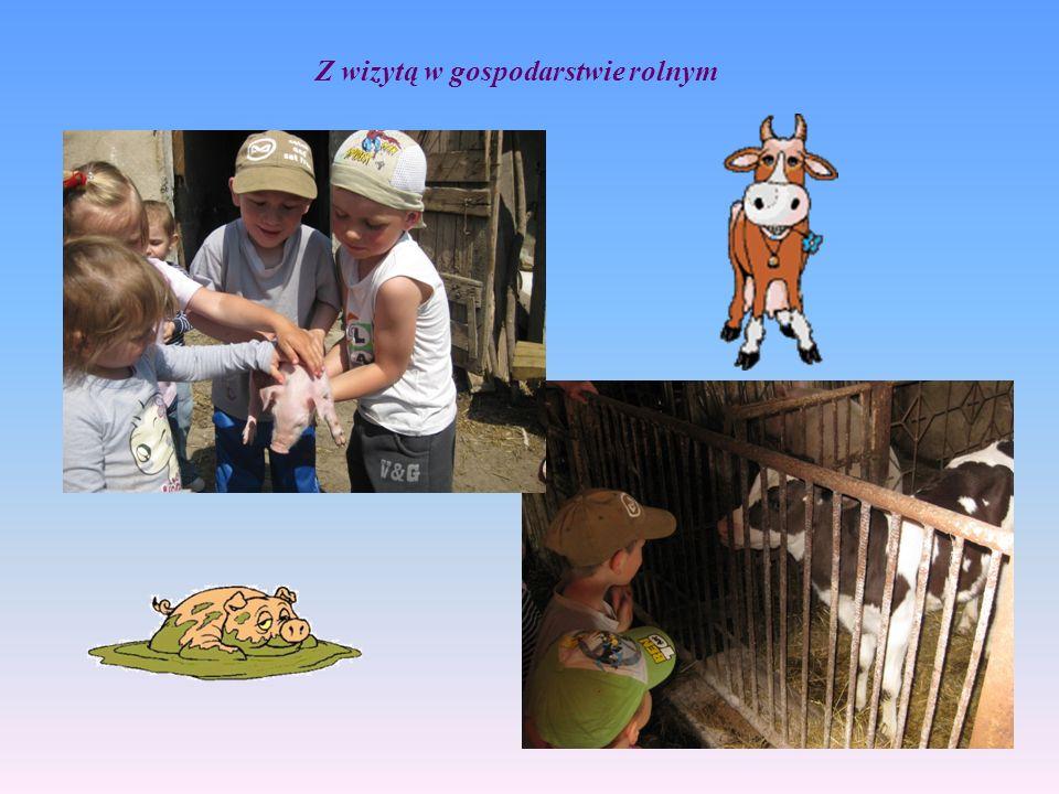 Z wizytą w gospodarstwie rolnym