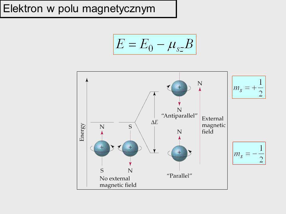 Elektron w polu magnetycznym