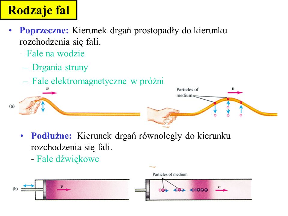 Rodzaje falPoprzeczne: Kierunek drgań prostopadły do kierunku rozchodzenia się fali. – Fale na wodzie.