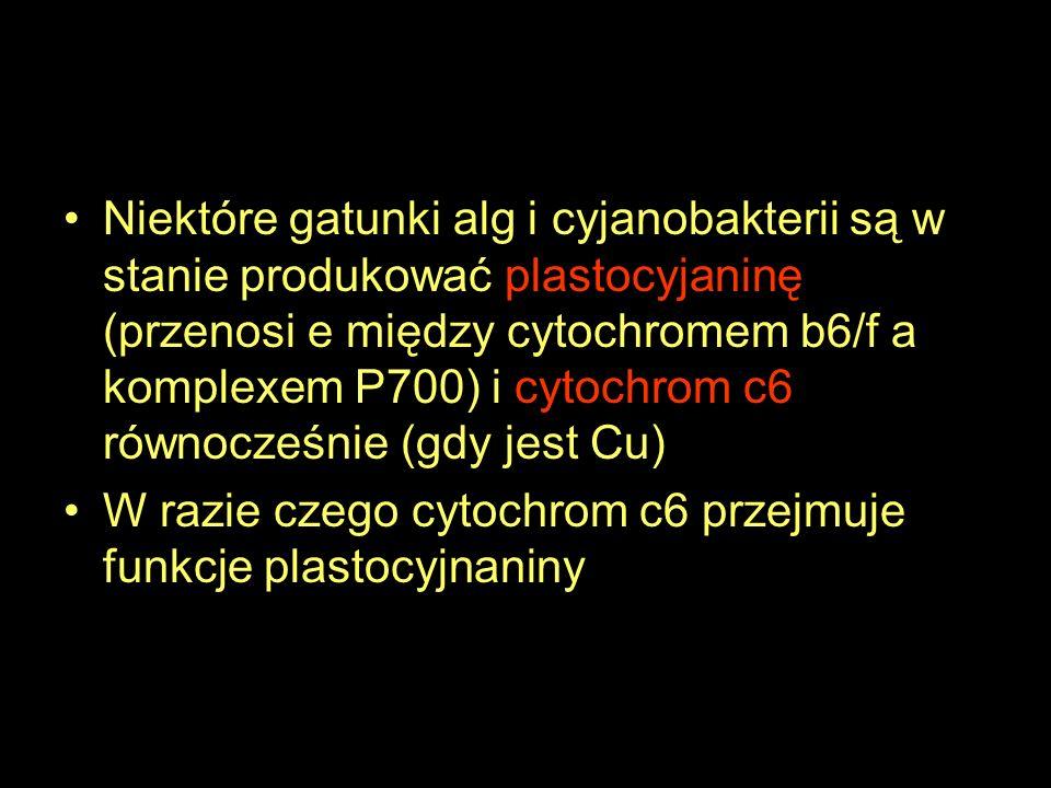 Niektóre gatunki alg i cyjanobakterii są w stanie produkować plastocyjaninę (przenosi e między cytochromem b6/f a komplexem P700) i cytochrom c6 równocześnie (gdy jest Cu)