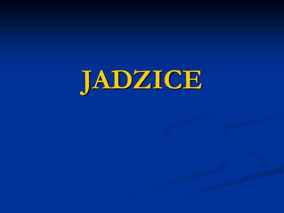 JADZICE