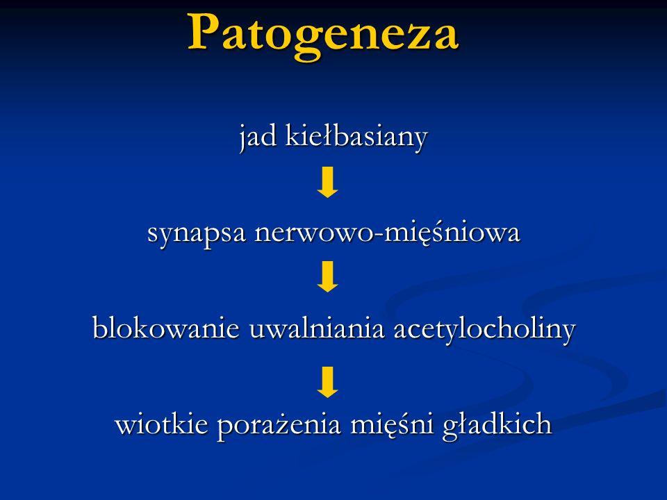 Patogeneza jad kiełbasiany synapsa nerwowo-mięśniowa