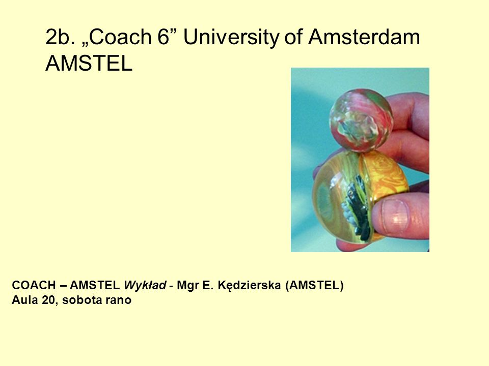 "2b. ""Coach 6 University of Amsterdam AMSTEL"