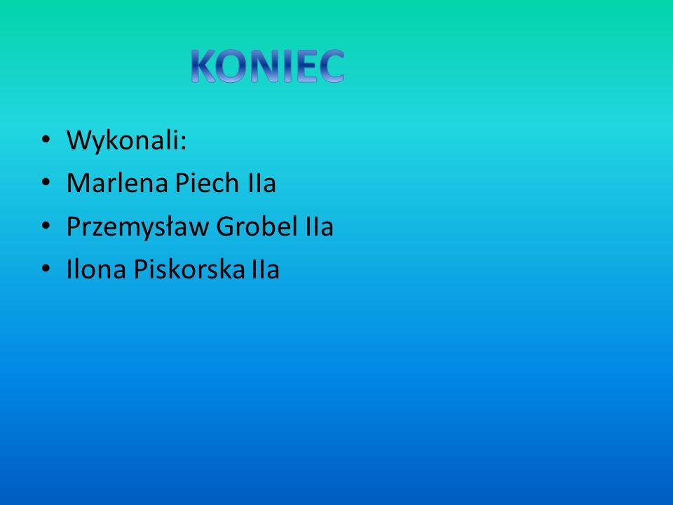 KONIEC Wykonali: Marlena Piech IIa Przemysław Grobel IIa