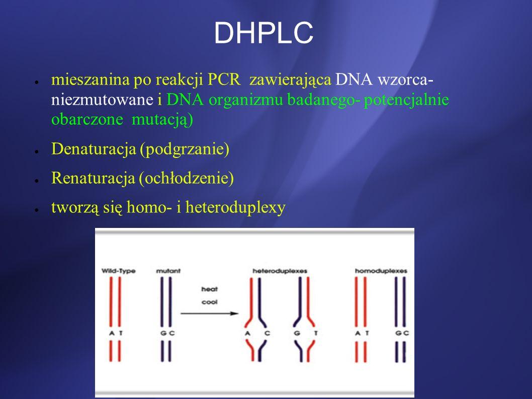 DHPLC mieszanina po reakcji PCR zawierająca DNA wzorca- niezmutowane i DNA organizmu badanego- potencjalnie obarczone mutacją)