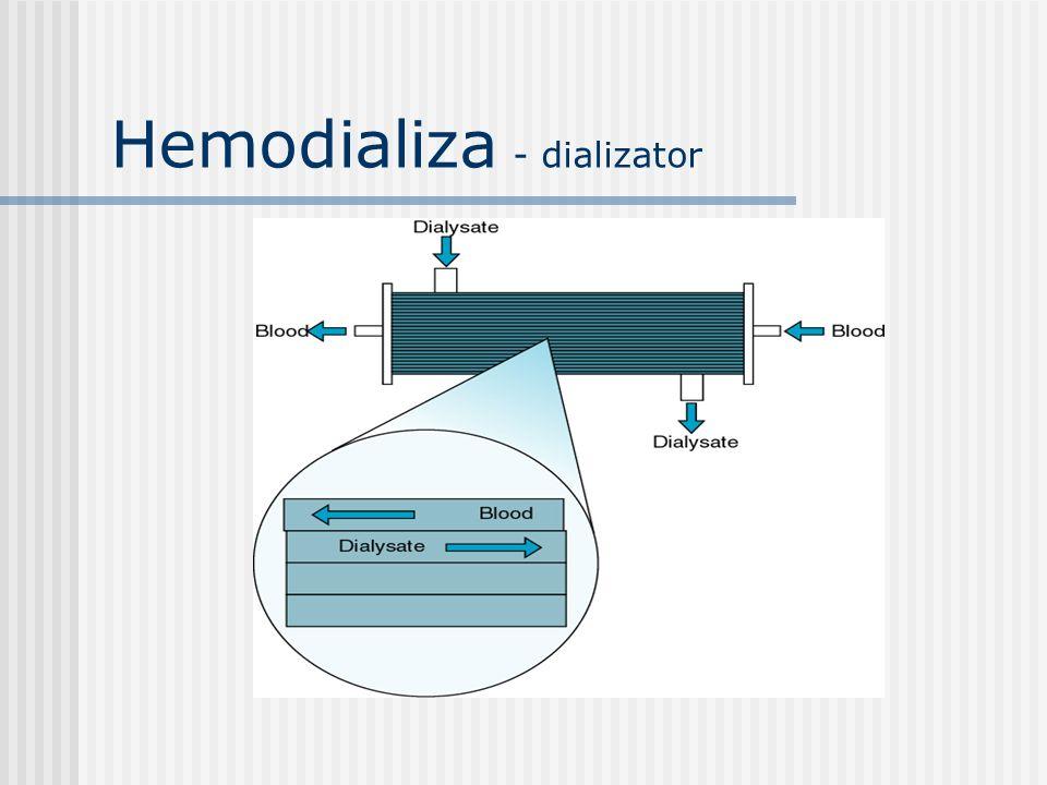 Hemodializa - dializator