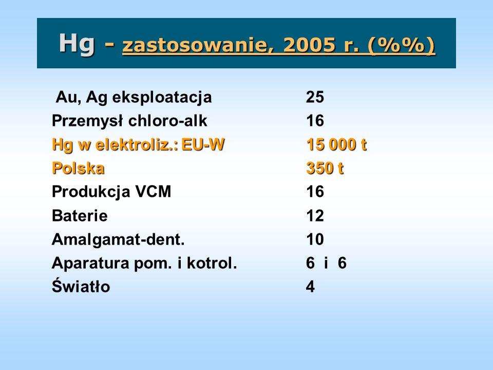 Hg - zastosowanie, 2005 r. (%%)