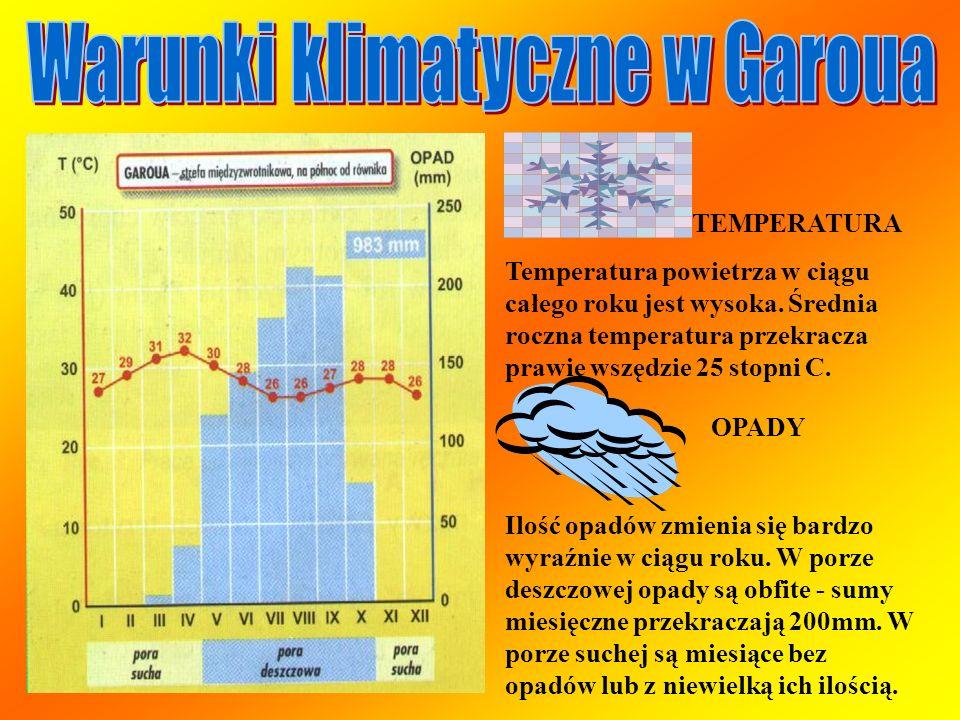Warunki klimatyczne w Garoua