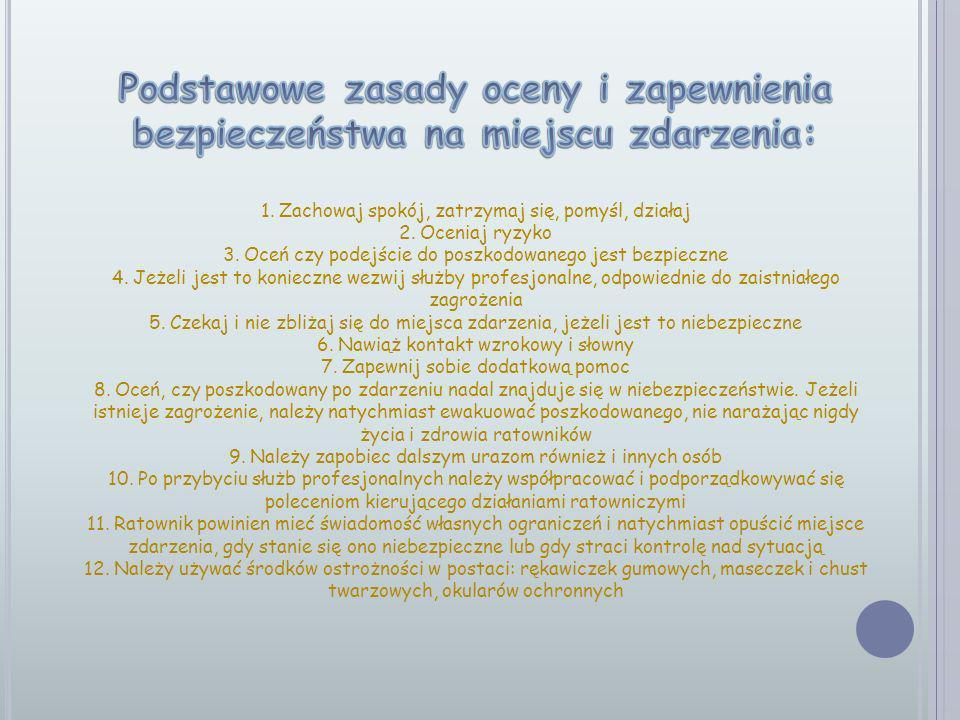 Podstawowe zasady oceny i zapewnienia bezpieczeństwa na miejscu zdarzenia: